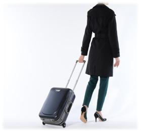 valise-trolley-bagage