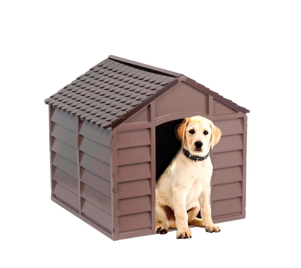 bfb440cc574ead Meilleure niche pour chien du moment en février 2019