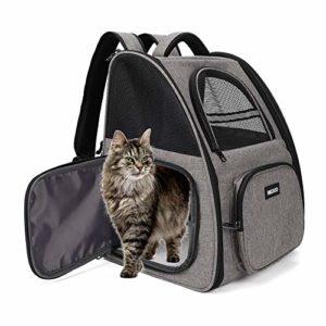 transport pour chat pour le dos