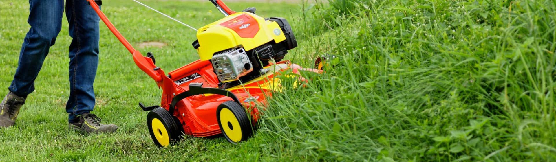 tondeuses á gazon thermique pour la pelouse