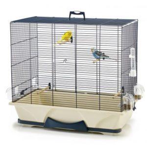 cage à oiseaux compacte