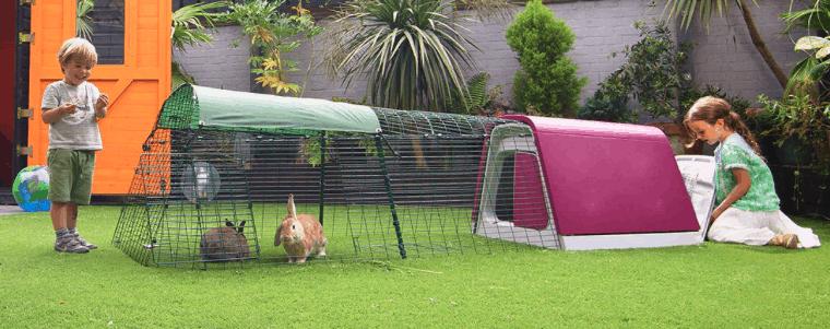 grande cage de lapin