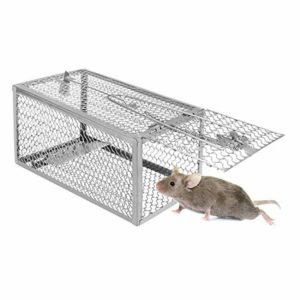 piège à rats petite