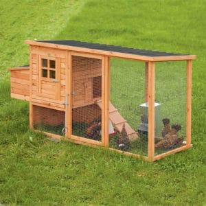 Poulailler compacte