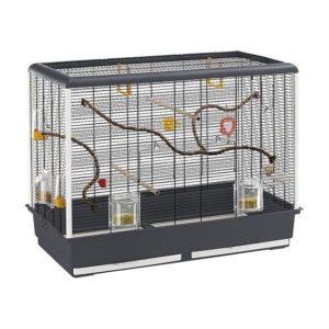 cage à oiseaux avec accessoires
