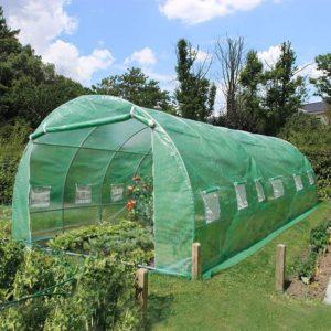serre de jardin verte